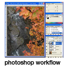 a default photoshop workflow